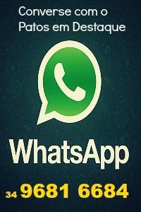 WhatsApp Patos em Destaque