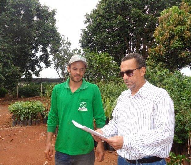 Conselheiro ambiental propõe mudanças no Habite-se e leis mais rígidas para promover a arborização urbana