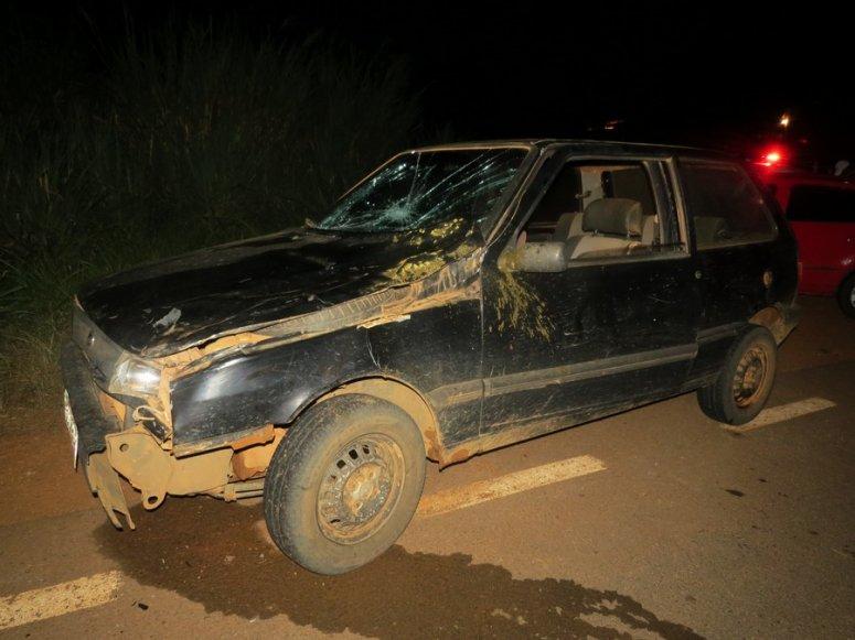 Motorista com sintomas de embriaguez atropela vaca na LMG-743