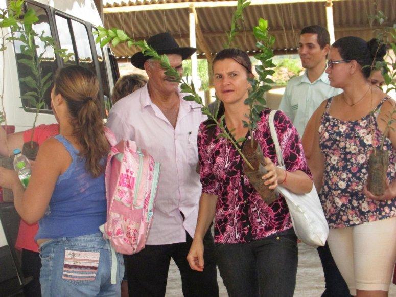 Semaid doa 100 mudas de árvores frutíferas a moradores do Distrito de Major Porto
